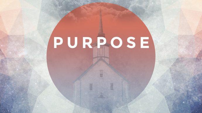purpose_series-web